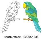 Bird Parrot Sits On A Wooden...