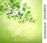 fresh green leaves on natural... | Shutterstock .eps vector #100108025