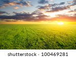 dirt road runs along the field... | Shutterstock . vector #100469281