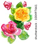 Watercolor A Bouquet From Rose...