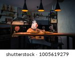 fantasy person sits at the bar... | Shutterstock . vector #1005619279