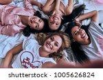 true feminine beauty. top view...   Shutterstock . vector #1005626824