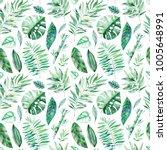 watercolor leaves branch...   Shutterstock . vector #1005648991