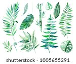 watercolor greens collection... | Shutterstock . vector #1005655291