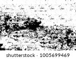 black and white abstract...   Shutterstock . vector #1005699469
