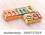 mindset word abstract in... | Shutterstock . vector #1005717319