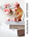 economy and finance   savings...   Shutterstock . vector #1005750505