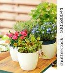 outdoor flower pots for small...   Shutterstock . vector #100580041
