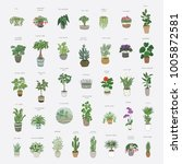 home plants cartoon hand drawn... | Shutterstock .eps vector #1005872581