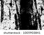 texture black and white...   Shutterstock . vector #1005903841