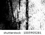 texture black and white...   Shutterstock . vector #1005905281