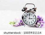 spring time change  spring... | Shutterstock . vector #1005931114