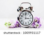 spring time change  spring... | Shutterstock . vector #1005931117