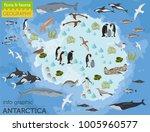 antarctic  antarctica   flora... | Shutterstock .eps vector #1005960577