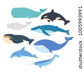 Whales And Dolphin Set. Marine...