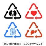 transplantation of human organs ... | Shutterstock .eps vector #1005994225