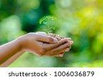 in the hands of trees growing...   Shutterstock . vector #1006036879