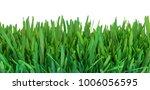green grass. natural grass... | Shutterstock . vector #1006056595