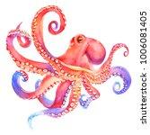 pink watercolor octopus. sea... | Shutterstock . vector #1006081405