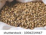 caramel malt in a bag. craft... | Shutterstock . vector #1006214467