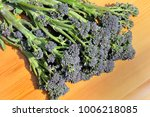 freshly picked bunch of purple... | Shutterstock . vector #1006218085