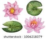 watercolor set of flowers  hand ... | Shutterstock . vector #1006218379