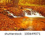 Nice Autumnal Scene With...