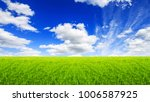 green field grass with a blue... | Shutterstock . vector #1006587925
