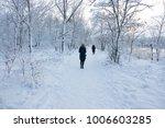 people walk in the woods in the ... | Shutterstock . vector #1006603285