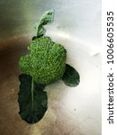 vegetable broccoli  are placed... | Shutterstock . vector #1006605535
