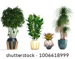 3d illustration of tropical... | Shutterstock . vector #1006618999