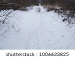 snow road through the forest   Shutterstock . vector #1006633825