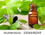 bitter orange leaf essential... | Shutterstock . vector #1006648249
