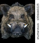 wild pig boar hunting trophy in ... | Shutterstock . vector #1006660225