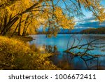 autumn leaves before sunrise on ... | Shutterstock . vector #1006672411