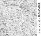 texture grunge monochrome.... | Shutterstock . vector #1006684981