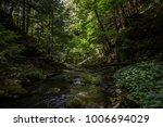 natural fall forest | Shutterstock . vector #1006694029