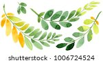 autumn leaf of acacia in a hand ... | Shutterstock . vector #1006724524