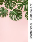 tropical leaves monstera on... | Shutterstock . vector #1006753579