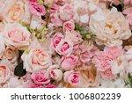 flower background. backdrop... | Shutterstock . vector #1006802239