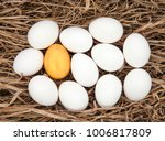group of fresh white easter... | Shutterstock . vector #1006817809