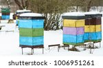 colorful beehives with... | Shutterstock . vector #1006951261