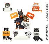 No Bullying Of Animals ...