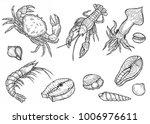 hand drawn engraved marine... | Shutterstock . vector #1006976611