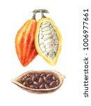 watercolor illustration of...   Shutterstock . vector #1006977661