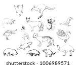 set of sketches of animals in... | Shutterstock .eps vector #1006989571