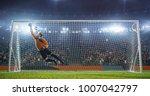 soccer goalkeeper in action on... | Shutterstock . vector #1007042797
