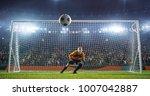 soccer goalkeeper in action on... | Shutterstock . vector #1007042887