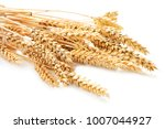 sheaf of wheat isolated on... | Shutterstock . vector #1007044927