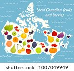 local fruits and berries of... | Shutterstock .eps vector #1007049949